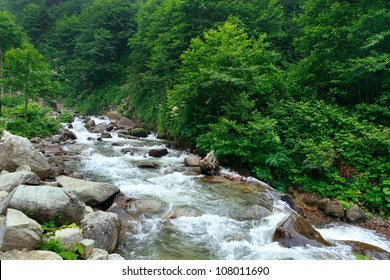 Ayder Plateau with an elevation of 1350m along the Black Sea in Turkey. The Ayder Valley lies between Rize and Artvin and is located at the point where the Firtina (Storm) River meets the Black Sea.