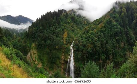 Ayder Plateau Foggy Forest And Natural Waterfall (Gelintulu Waterfall) From Rize - Turkey