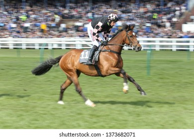 AYR RACECOURSE, AYRSHIRE, SCOTLAND, UK : 13 APRIL 2019 : Azzuri ridden by jockey Harry Skelton gallops to post before winning the Listed Handicap Chase over 2m at Ayr Races
