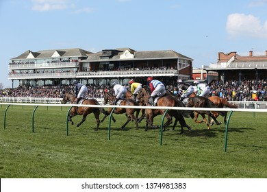 AYR RACECOURSE, AYRSHIRE, SCOTLAND, UK : 12 APRIL 2019 : At the start of a race Racehorses gallop in front of the packed Grandstands at Ayr Races