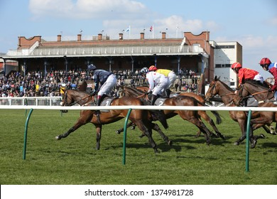 AYR RACECOURSE, AYRSHIRE, SCOTLAND, UK : 12 APRIL 2019 : Racehorses gallop in front of the packed Grandstands at Ayr Races