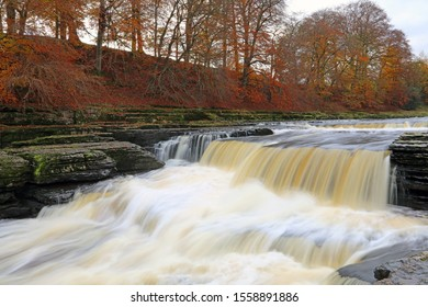 Aysgarth Lower Falls with autumn colours, Yorkshire Dales