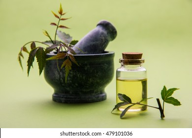 Ayurvedic anti bacterial Herbs Neem / Lilac (Azadirachta indica) with Oil in bottle with mortar, isolated over plain background, selective focus