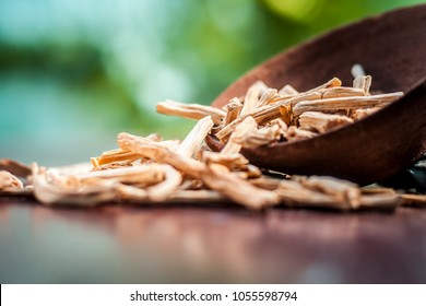 Ayurvedic herb satavari,Asparagus racemosus with its powder and root in a bowl on brown wooden surface in dark gothic colors for healthy female reproductive system, for an good reproductive system.