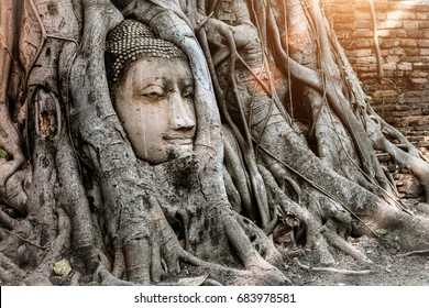 Ayutthaya Buddha Head statue with trapped in Bodhi Tree roots at Wat Maha That (Ayutthaya). Ayutthaya historical park Thailand. Vintage effect.