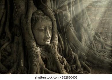 Ayutthaya Buddha Head in Tree Roots, Buddhist temple  Wat Mahathat in thailand