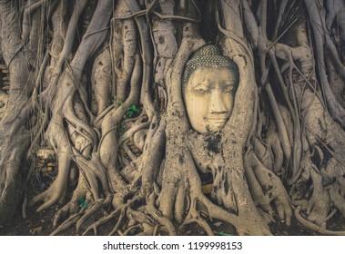 Ayutthaya Head Buddha in The Tree Roots at Wat Mahathat ayuthaya