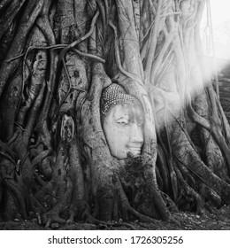 Ayutthaya Thailand, Buddha. Amazing Asia.