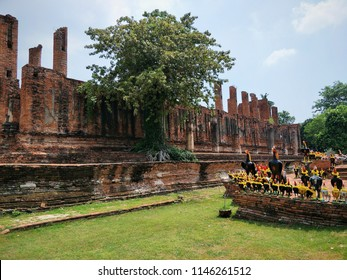 Ayutthaya, Thailand – July 7, 2017 : History Culture of Old Capital, Ayutthaya old capital of Thailand, Ayutthaya historical park.