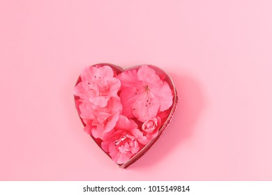 Azalea blooms in the shape of a heart for Valentine's Day