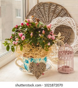 Azalea (rhododendron)  in vintage pot with decor stickers pair of ducks on the window