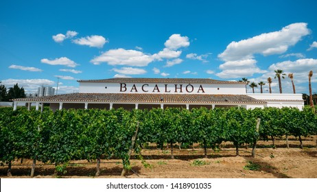 Azeitao, Lisbon, Portugal - June 7, 2019: Bacalhoa vineyard at Azeitao in the Setubal region, Portugal famous for its Moscatel wine