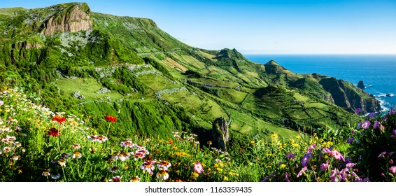 The Azores landscape: Flores Island, wide angle view on Rocha dos Bordoes, a volcanic rock on the coast of Flores, an beautiful green island at the azores. In the front some stunning wild flowers.
