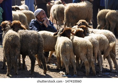 AZROU, MOROCCO - MARCH 29: An unidentified man, a berber farmer, waits for customers to buy his sheep on March 29, 2011. The weekly Azrou Berber market attracts thousands from the surrounding area.