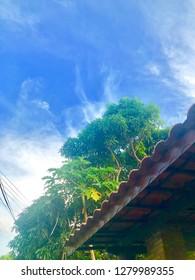 céu azul arvores verdes e telhado blue sky green trees and roof