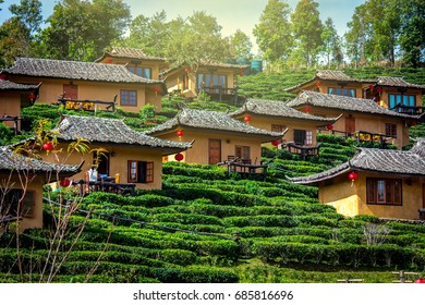 Baan Rak Thai village, a Chinese settlement in Mae Hong Son province, Northern Thailand. The village was established by refugees who escaped the communists. Huts are surrounded by tea plantations.