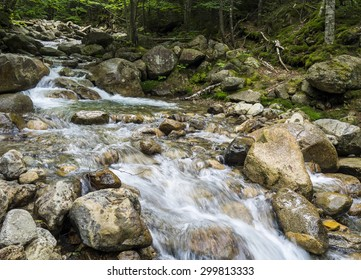 Babbling brook through New England woods, New Hampshire