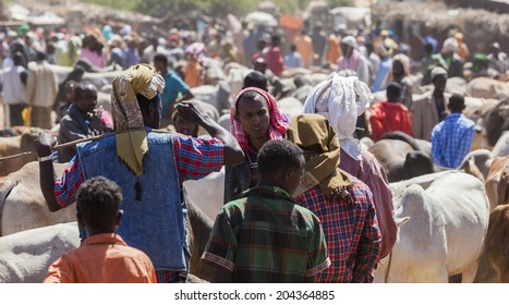 BABILE, ETHIOPIA - DECEMBER 23, 2013: Brahman bull, Zebu and other cattle for sale at one of the largest livestock market in the horn of Africa countries.
