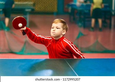 Baby bats the ball tennis indoors, ping pong