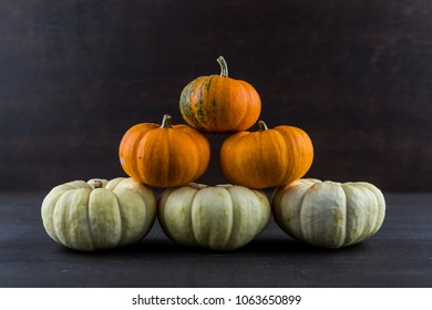 Baby Boo and Jack Be Little Pumpkins in Stack on dark background