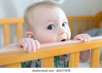 Baby boy chewing on his Crib