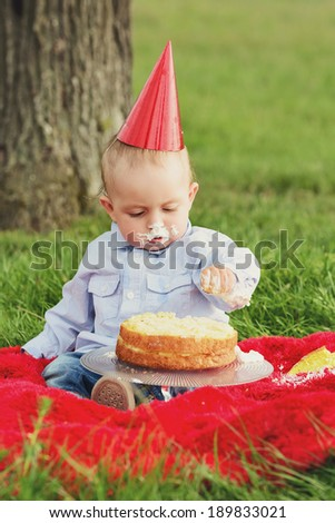 A Baby Boy Destroying Birthday Cake At His First Anniversary