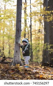 Baby boy in fall forest