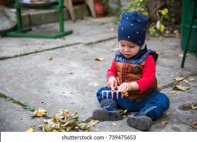 Baby boy playing with autumn leaves. (15-month-old).