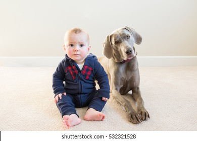 Baby boy sits with his pet dog