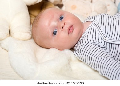 Baby boy in striped bodysuit. Infant with blue eyes and curious face on light blanket with soft toys on background, defocused. Baby lying on white duvet, close up. Childhood and curiosity concept.