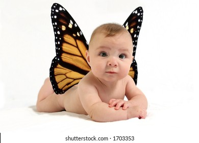 Baby with butterfly wings against white backdrop