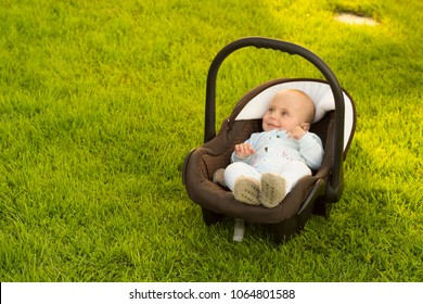 Baby in car seat on grass, nature