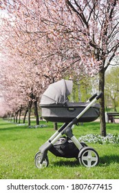 baby carriage stokke in nature to the park