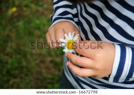 Baby Child Discovering Daisy Stock Photo Edit Now 16672798