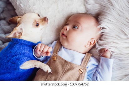 The baby with dog lie on the carpet