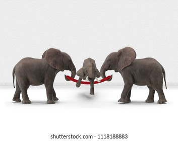 baby elephant skipping with rope