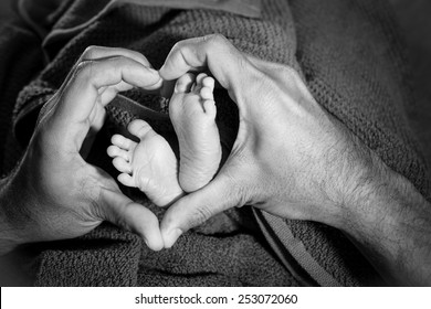 Baby feet in father hands, heart
