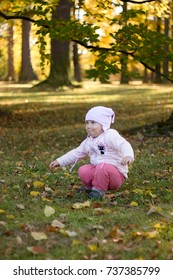 Baby girl face portrait emotion in the autumn Park.