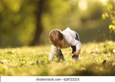 Baby girl learning to walk on grass in park / Baby girl learning to walk