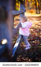 Baby girl looking over a wooden fence in the fall