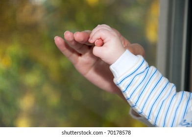 baby hand in hand the mother close up