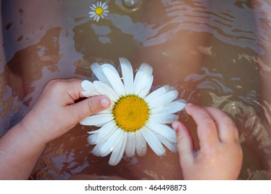 Baby hands with Chamomile flower on the water surface