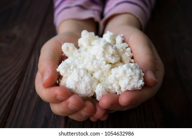 baby hands holding cottage cheese on wooden background
