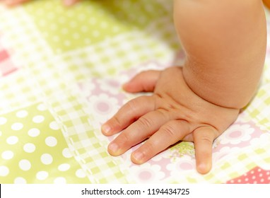 Baby Hands On The Colorful Floor
