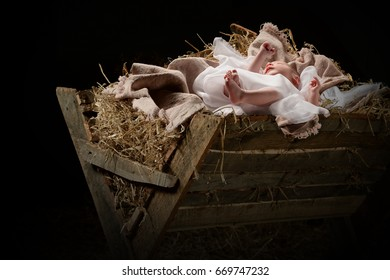 Baby Jesus on a manger on Christmas Day