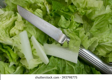 Baby lettuce with silver knife