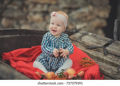 Baby newborn girl with blue eyes wearing tartan check dress shirt and pink shawl bandana posing on wooden old style retro wagon cart trundle with apples and red comforter plaid wrap.