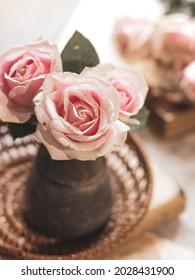 Baby pink rose flower in stilllife concept. selective focus. blured background