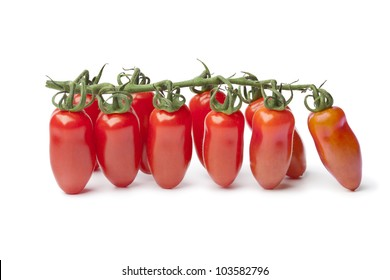 Baby San Marzano�s tomatoes on a vine on white background