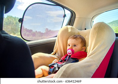 baby seat car curtains